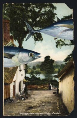 FISHVILLAGE 2019 Collage on vintage postcard 9x14cm KEELERTORNERO