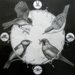 THE BIRD RING 2014 Pencil on paper 70x70cm KEELERTORNERO