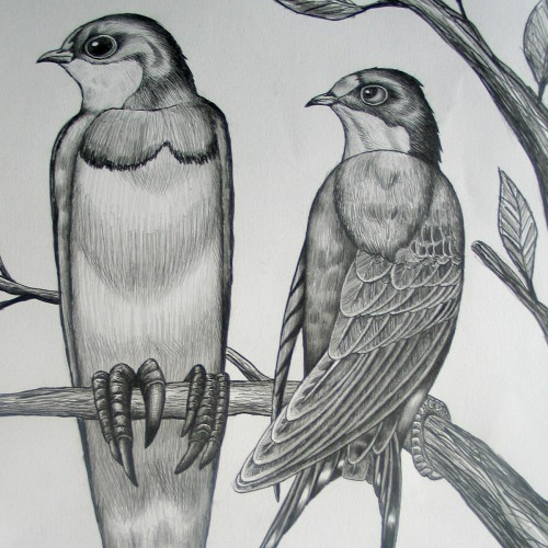 KEELERTORNERO_drawing_02