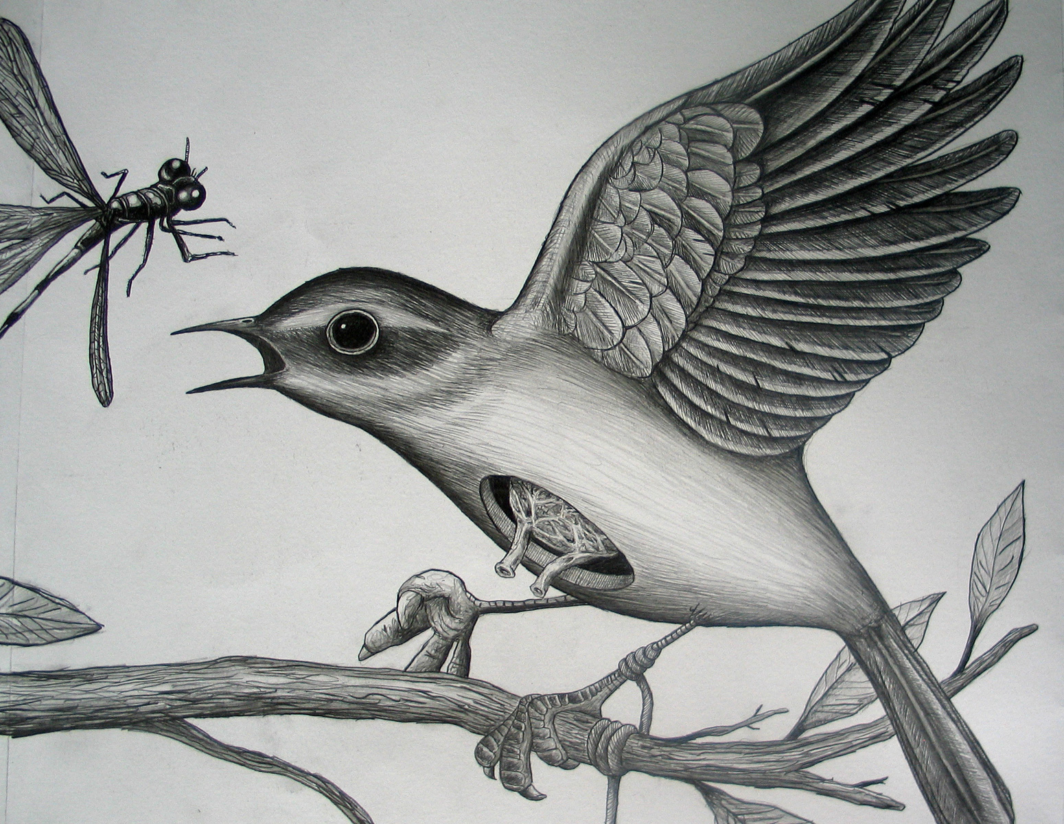 KEELERTORNERO_drawing_04