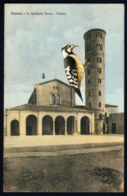 WOODPECKERTOWER 2 2019 Collage on vintage postcard 9x14cm KEELERTORNERO