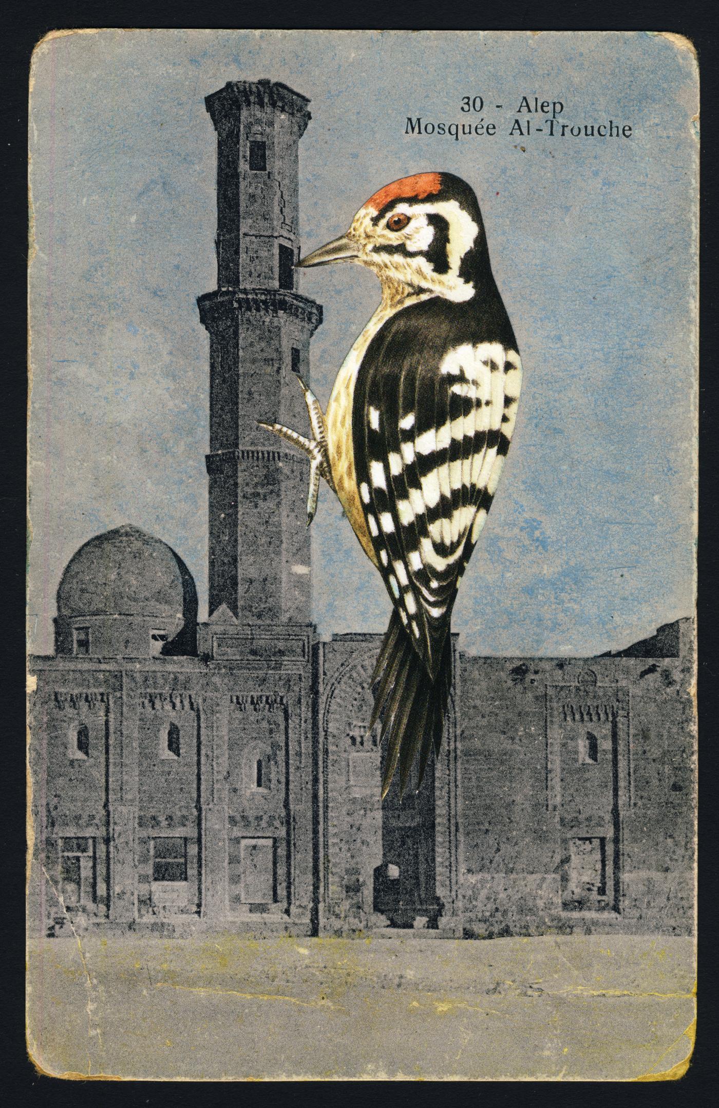 WOODPECKERTOWER 1 2019 Collage and Retouching fluid on vintage postcard 9x14cm KEELERTORNERO